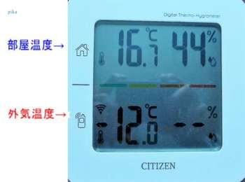 17.1.22.-12℃.JPG