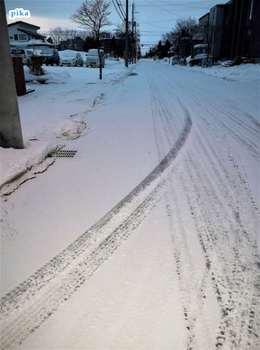 17.2.12.朝の雪.JPG