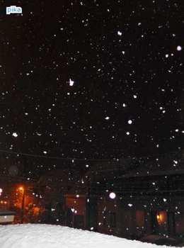 17.3.30.降る雪3.JPG