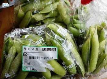 17.5.5.うすい豆(エンドウ).jpg