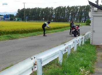 17.8.30.田圃&バイク.JPG