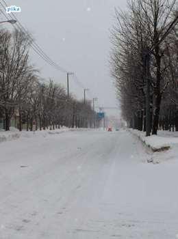 17.2.14.朝の雪.JPG